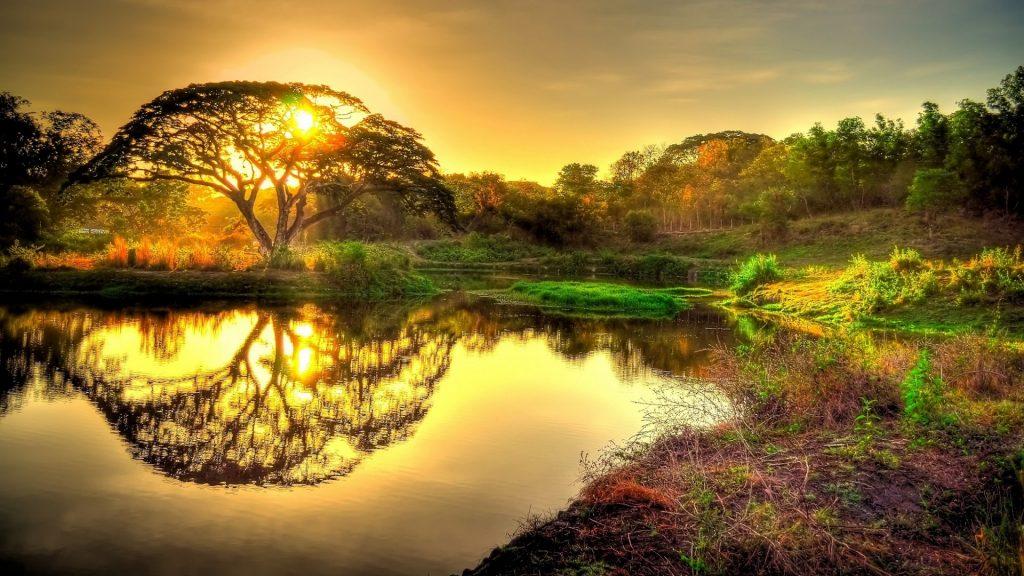 Phong Cảnh đẹp Lúc Bình Minh