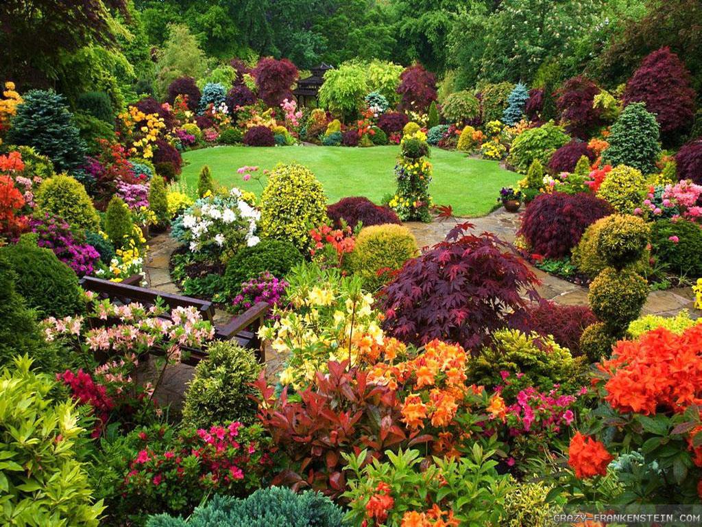 Vườn Hoa Thánh Phố đẹp