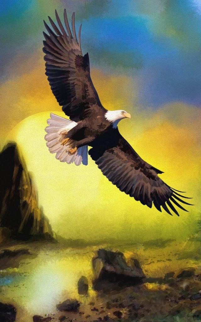 Tổng Hợp Những Hình Nền Chim đại Bàng Cho điện Thoại đẹp Nhất (3)