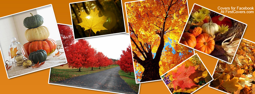 Autumn_collage-909
