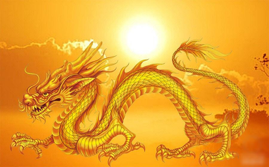 Hình ảnh Con Rồng Vàng đẹp Nhất