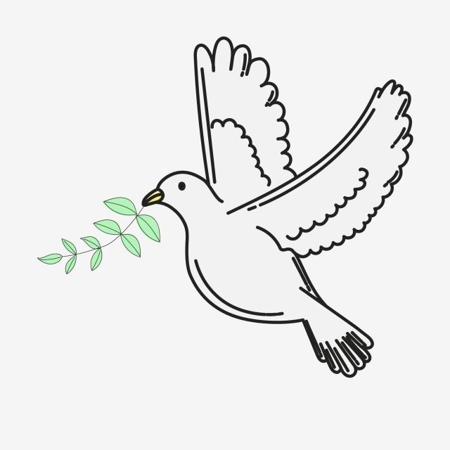 Hình Vẽ Chim Bồ Câu