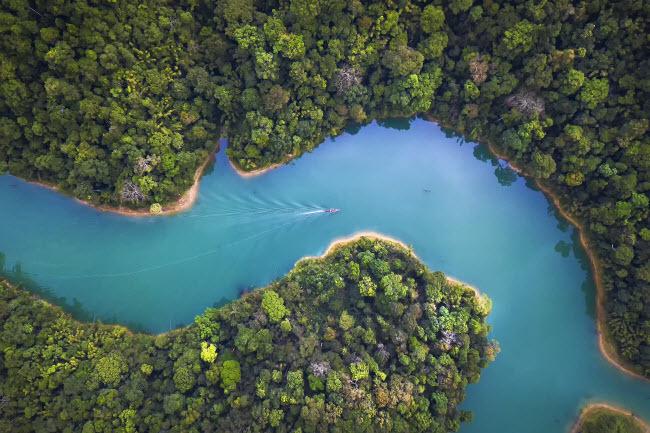 Dòng Sông Bắt Nguồn Từ đập Ratchapha, Chảy Qua Các Khu Rừng ở Thái Lan