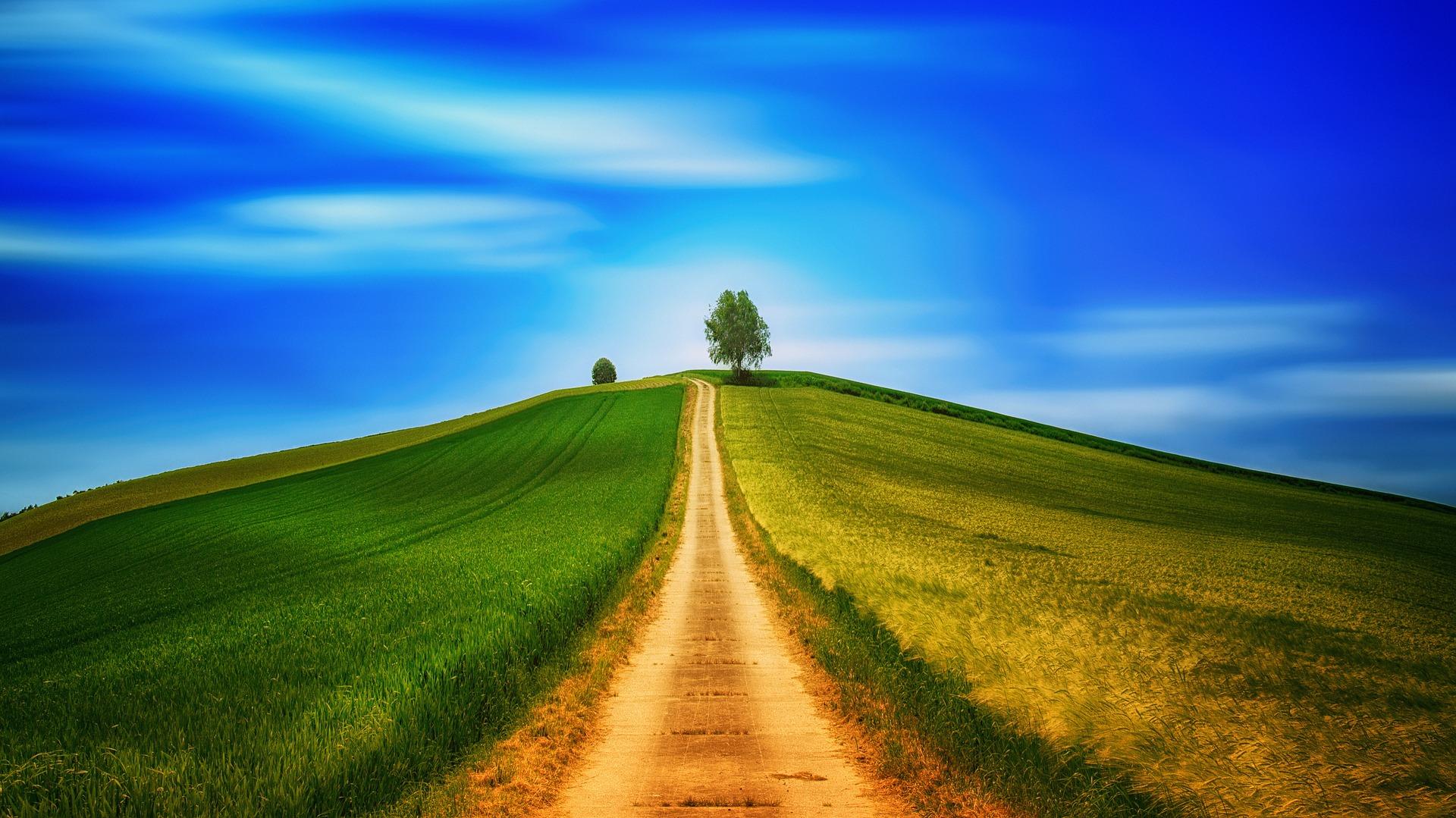 Top Những Hình ảnh Con đường đẹp Nhất Thế Giới