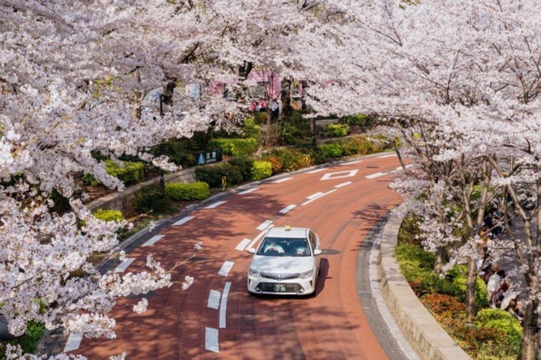 Hình ảnh Về đất Nước Nhật Bản