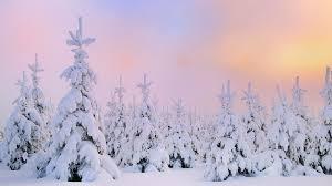 ảnh Tuyết Trắng