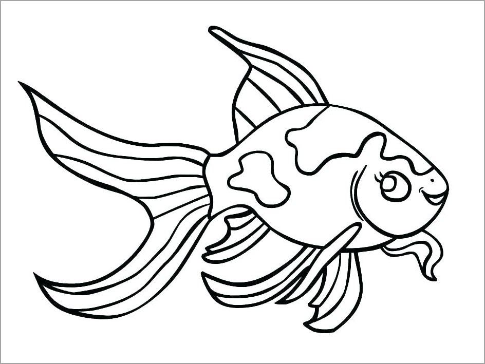 Tổng Hợp Các Hình Tô Màu Cá Đẹp