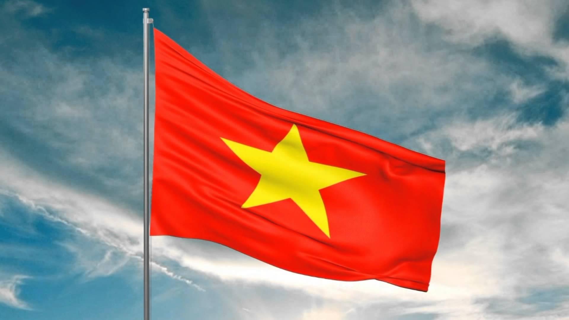 Hình ảnh Cờ Tổ Quốc Việt Nam